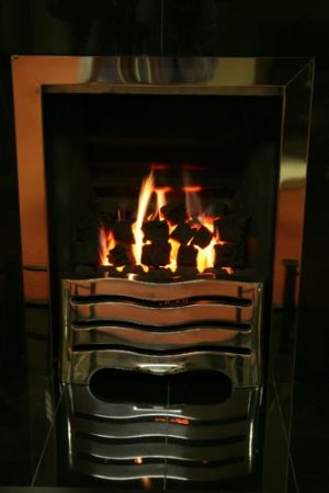 Gas Fire Silver Ornate with Coals
